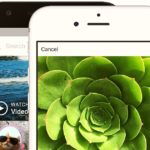 Download Instagram App for iPhone, Android & Windows